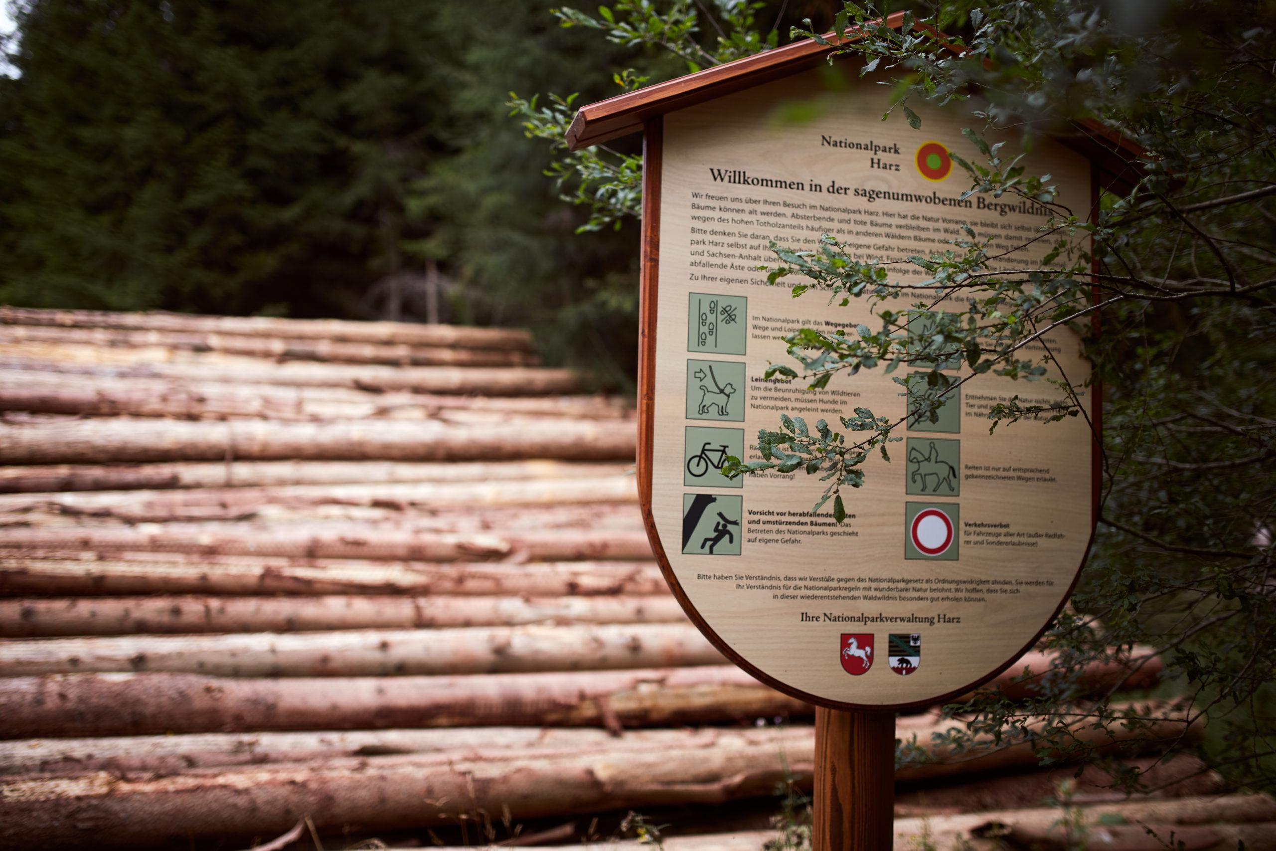 she wanders - Anleitung-Tipps-Regeln-zum-Wandern-im-Nationalpark-Harz