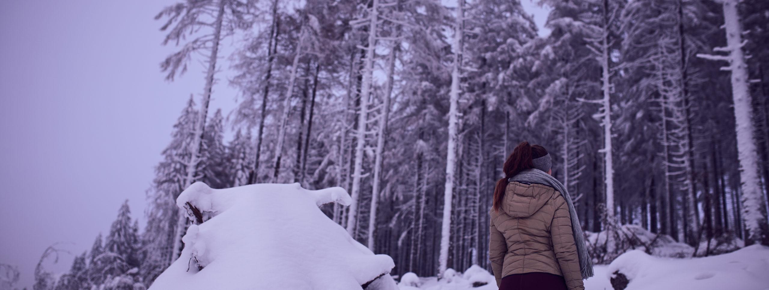 she wanders sieht Fichten auf dem Wurmberg im Schnee