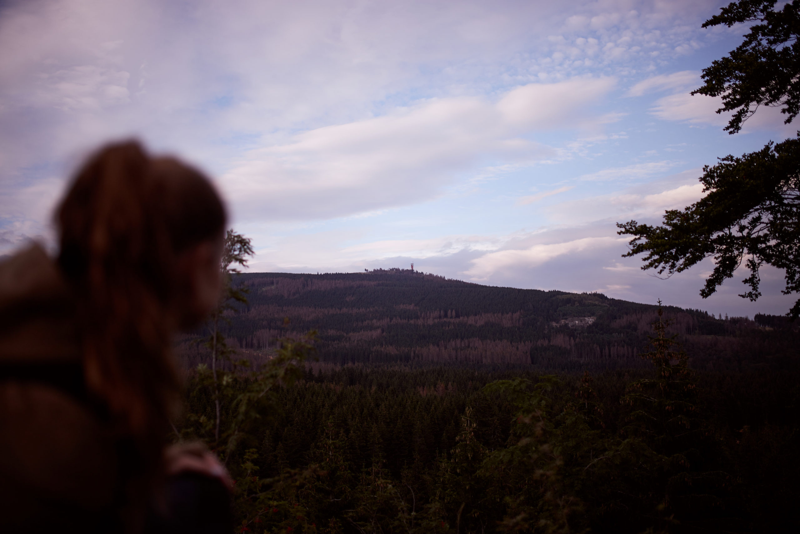 she wanders - Sara blickt auf den Wurmberg in Braunlage