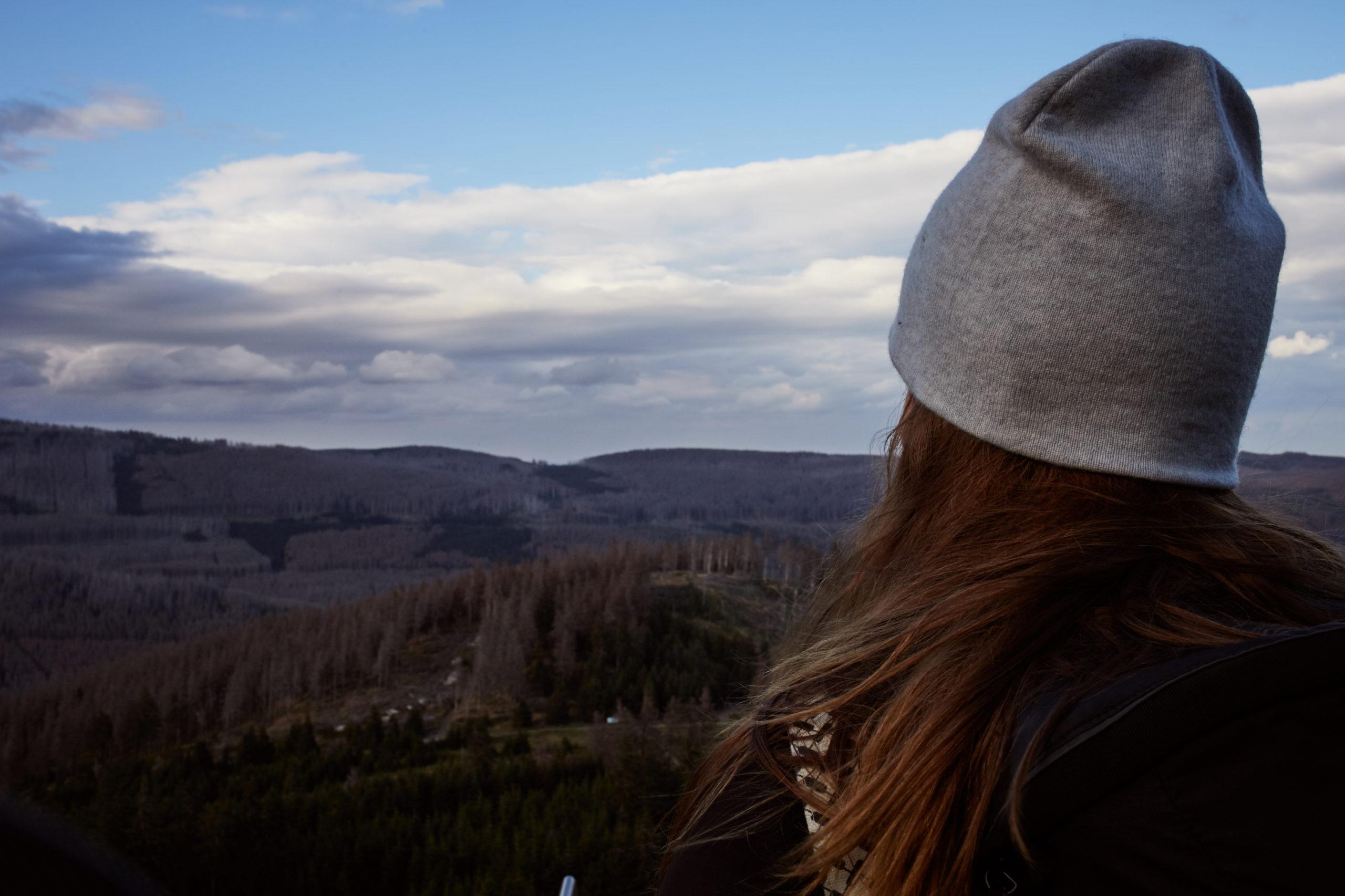 she wanders - Blick auf den Fichtenwald im Harz